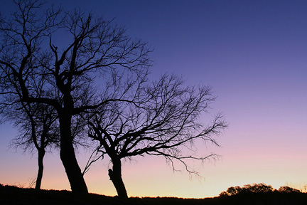 Sunrise Enchanted Rock. Image #4